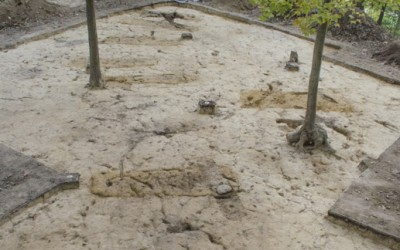 A row of graves uncovered during the Slave Cemetery Survey.
