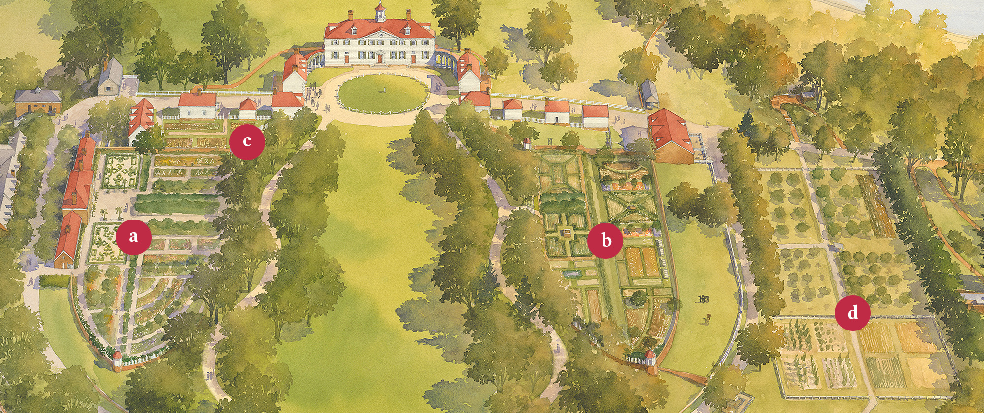 Layout Kitchen Design The Four Gardens At Mount Vernon 183 George Washington S
