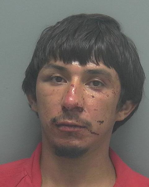 Francisco Duarte Arrested - Cape Coral, FL Mugshots and Arrest