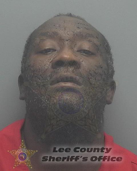 Lee County Mugshots -  Charles Everette Jr Robinson