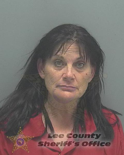 Lee County Mugshots -  Tammy Lee Ames