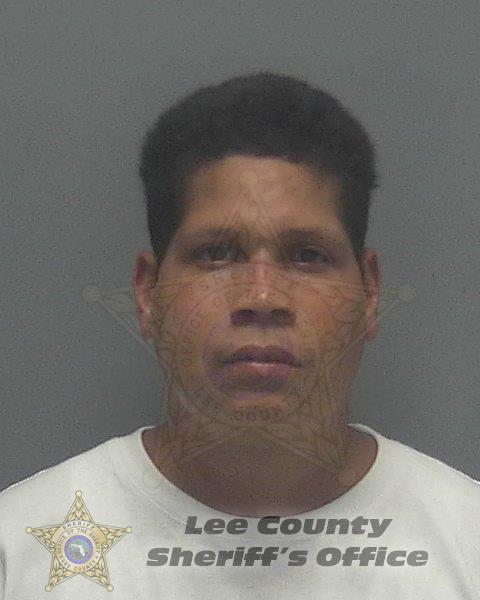 Lee County Mugshots -  Jose Danny Aponte-pinero