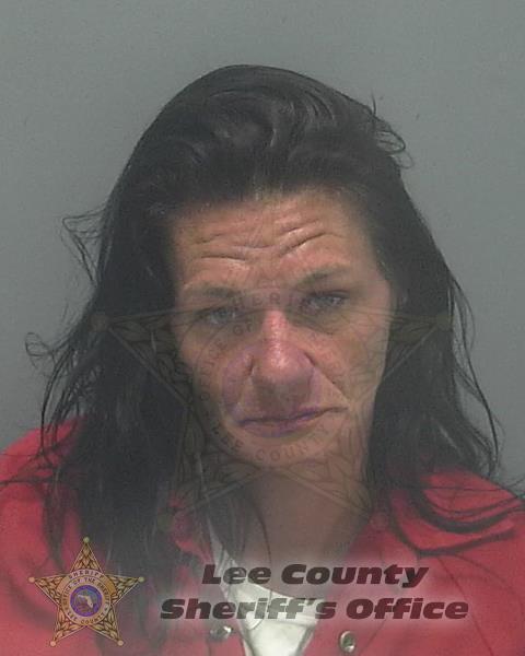 Lee County Mugshots -  Dezarae Christine Janeda