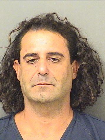 Palm Beach County Mugshots -  Matthew N Moskowitz