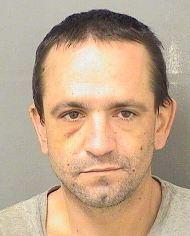 Palm Beach County Mugshots -  Peter Druzbanski