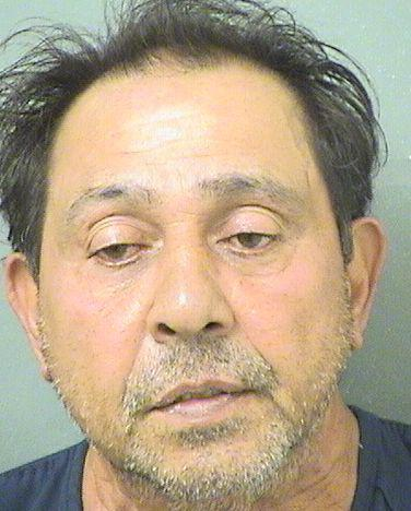 Palm Beach County Mugshots -  Ramish Lal