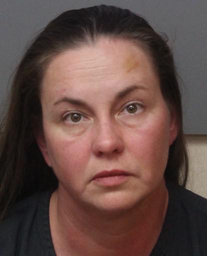 Polk County Mugshots -  Teresa Ann Pultz