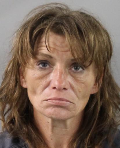 Polk County Mugshots -  Melissa  Tabb