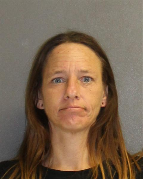 Volusia County Mugshots -  April Wilson