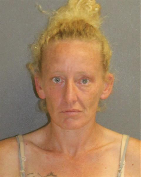 Volusia County Mugshots -  Nichole Hardy
