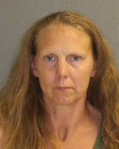 Volusia County Mugshots -  Anna Slover