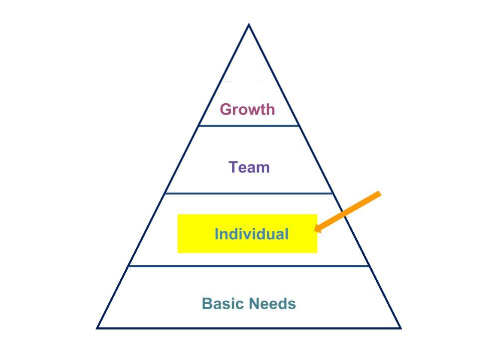 Hierarchy Pyramid-Individual