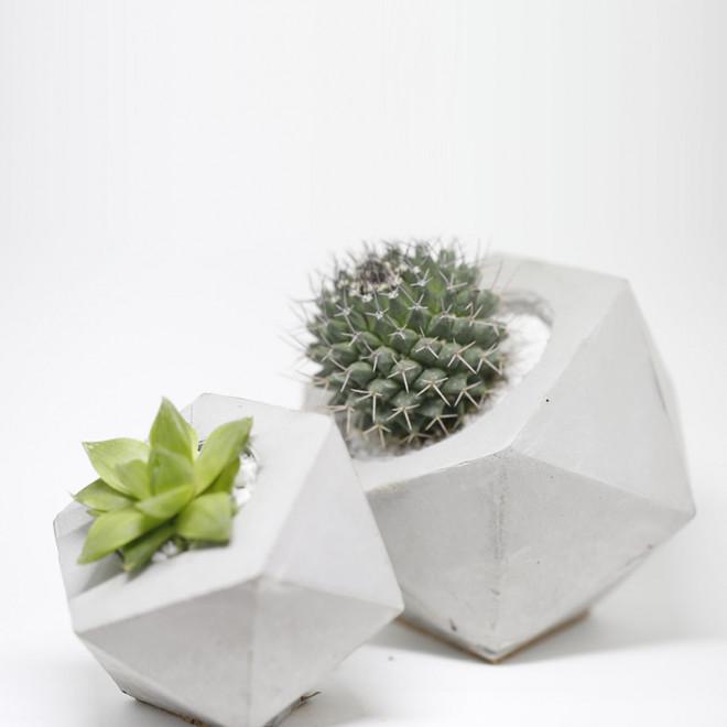 Combo Vaso Icosaedro Pequeno e Grande