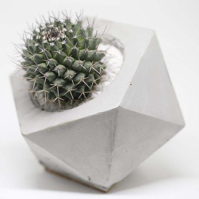vaso geométrico em concreto