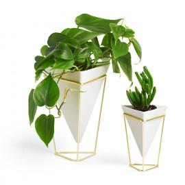 Vaso de Mesa Trigg - Conj. 2