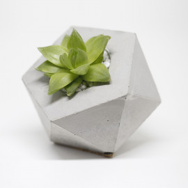 Vaso Icosaedro Pequeno
