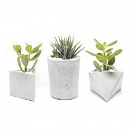 Trio de Vasos de Concreto Figa