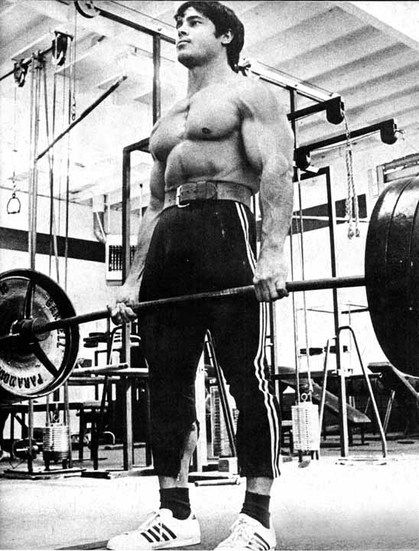 Muscle size high or low reps