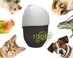 ROOTS for PET without seeds