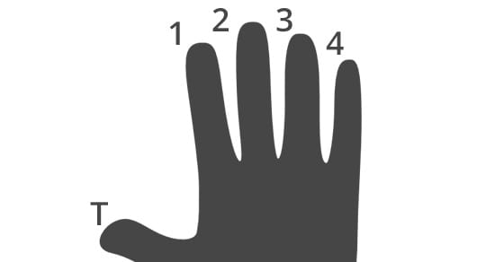 Fretting Hand Diagram