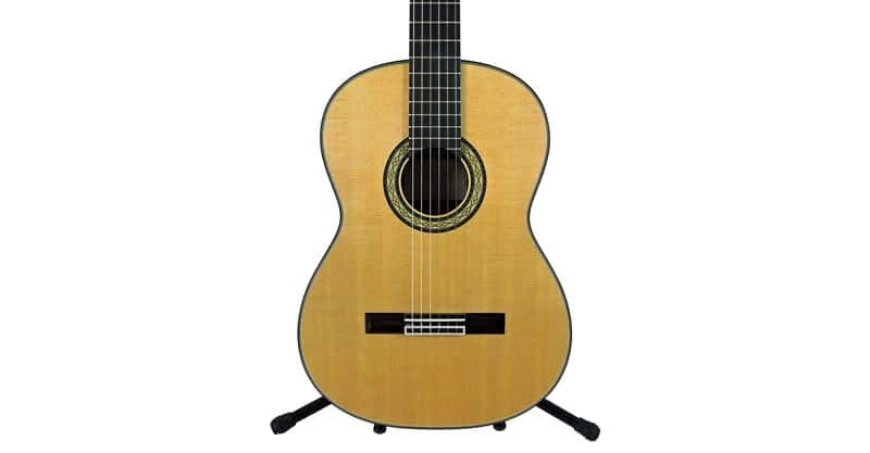Takamine H8SS Classical Nylon String Acoustic Guitar With Hard Case