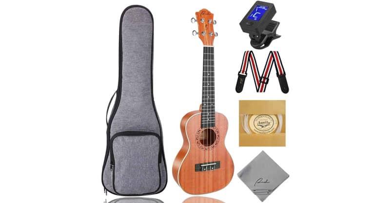 Ranch Concert Ukulele Instrument Kit