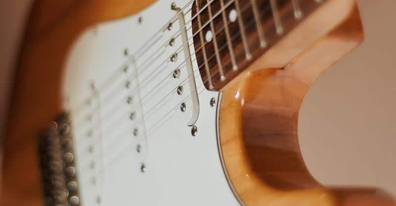 Bass guitar, harp guitar and other guitars