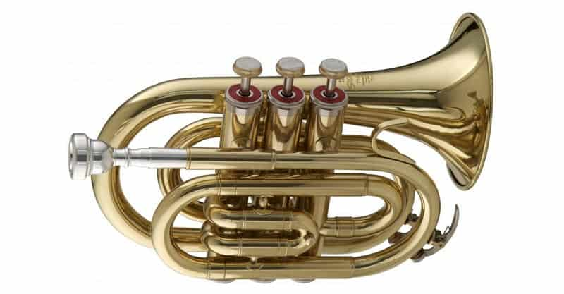 Stagg WS – TR245 Bb Pocket Trumpet With Case