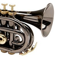 Top Pocket Trumpet Brands For The Money