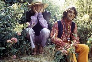 the incredible string band artist picture