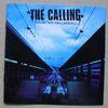 CALLING - CAMINO PALMERO