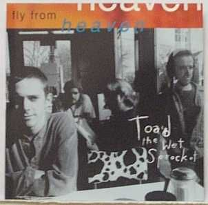 toad the wet sprocket discography