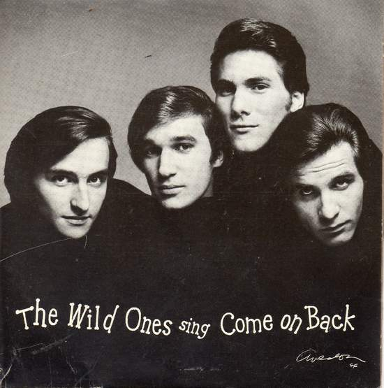 """Wild Ones - Come On Back/come On Back (instrumental) - 7""""PS"""