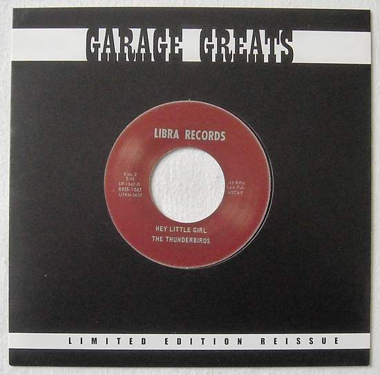 """Thunderbirds - These Days Are Gone / Hey Little Girl - 7"""""""