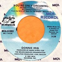 Donnie Iris - You're Only Dreaming - Usa Single - 45