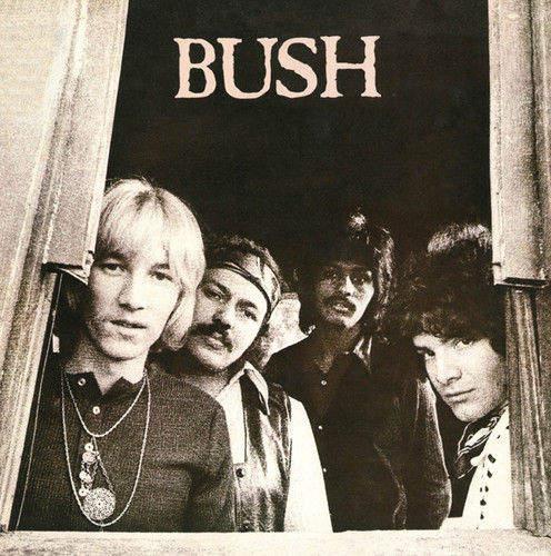 Bush - Bush - CD