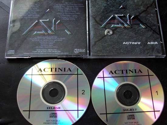 Asia Actinia