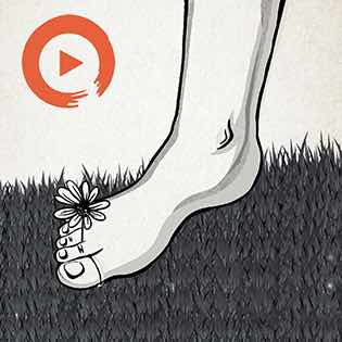 Music to Dance Barefoot In The Grass Playlist Home Page