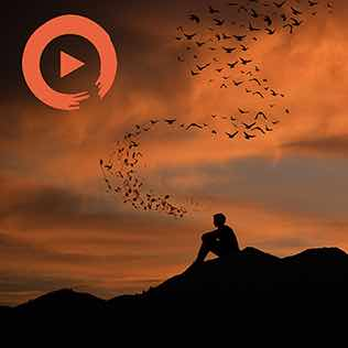 Music to Think About Life Playlist Home Page