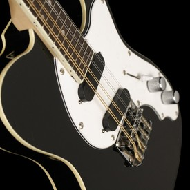 Eastwoodmandocaster black 9