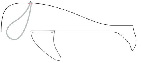 Wallace the Whale