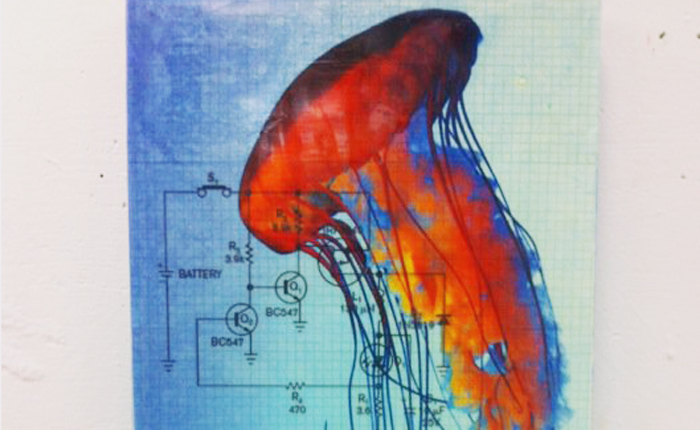 An art piece by the author. A pulsating jellyfish with long tentacles is in the foreground, slightly transparent and seeming to move towards the top of the photo. The jellyfish is fire-colored, but outlined in blue. In the background is a blueprint, showing the outline of circuits and batteries printed neatly on graphing paper.