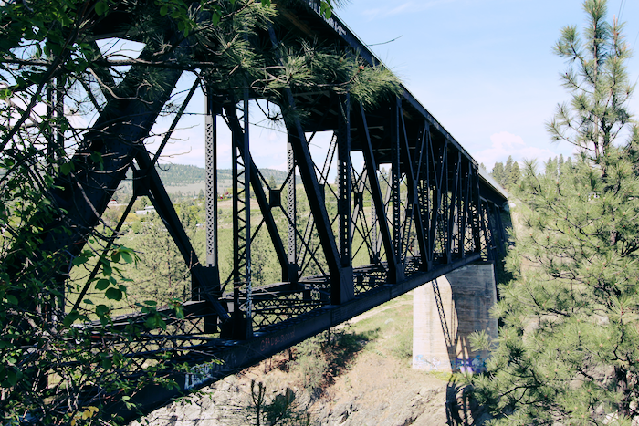 Image of a metal bridge crossing a chasm, surrounded by pine trees in the sun.