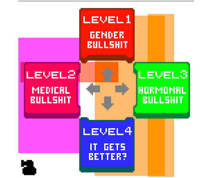 A colorful graphic design that looks like the control panel of a handheld video game, with up-down-left-right buttons that say 'Level 1: Gender Bullshit.' 'Level 2: Medical Bullshit.' 'Level 3: Hormonal Bullshit.' 'Level 4: It Gets Better?'