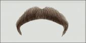 Atelier Bassi Moustache-M10