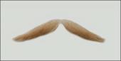 Atelier Bassi Moustache-M6