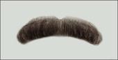 Atelier Bassi Moustache-M4
