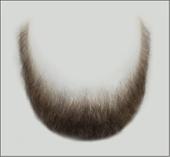 Atelier Bassi Full Beard-B2
