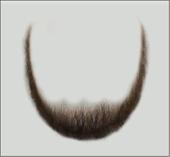 Atelier Bassi Full Beard-B1