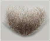 Atelier Bassi Chin Beard-C1